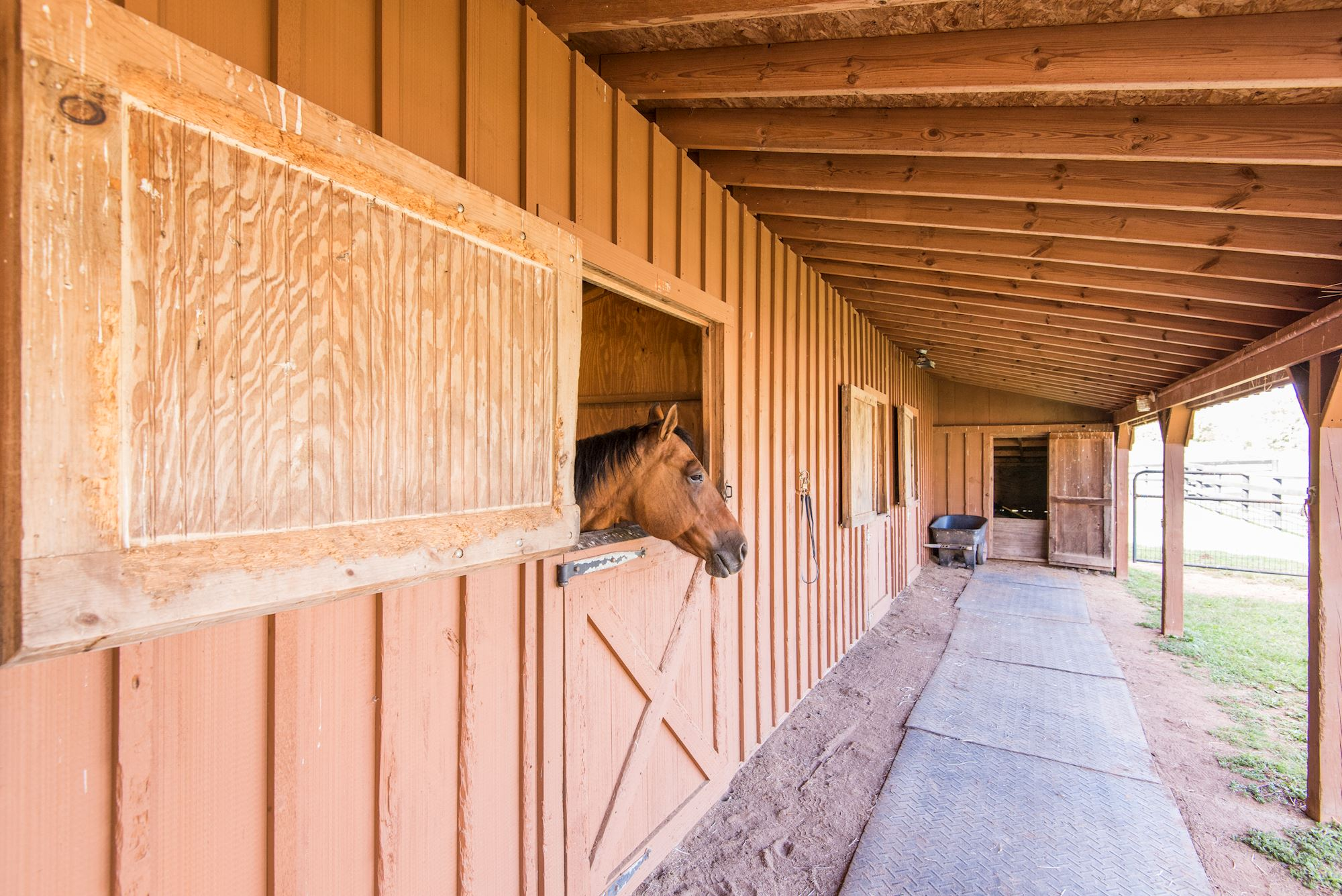 4 Stall Horse Barn With Heated Tack Room U0026 Addu0027l Storage